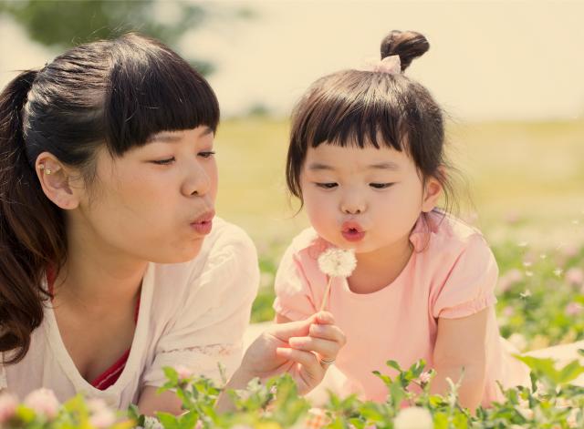 家族の幸福と安心